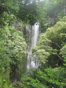 Magnificent waterfall on the road to Hana.